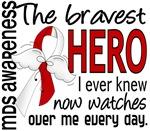 Bravest Hero MDS