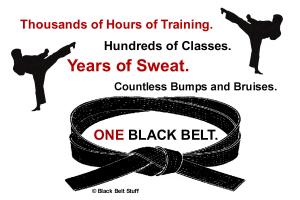 ONE Black Belt 2 Karate Shirts Gifts Merchandise