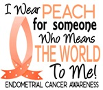 Means World To Me 1 Endometrial Cancer Shirts