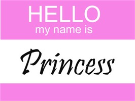 Hello My Name Is Princess