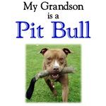 CUSTOM Pet Products