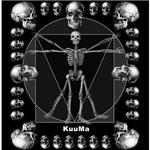 Leonardo da skull(B)