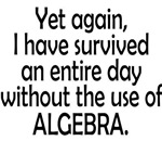Survived Without Alegebra