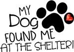 My Dog Found Me