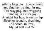 Pit Bull Poem Gear