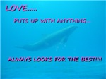 Love puts up with Anything