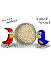 Bird Seed Ball