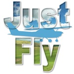 Just Fly Airplane