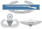 Multiple Badges