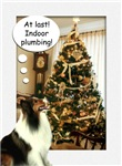 Sheltie Christmas Fun