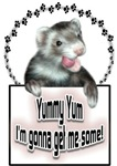 Yummy Yum Ferret