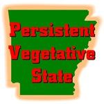 Arkansas - Persistent Vegetative State