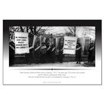 Herstory/Feminist: Women's Suffrage - Alice Paul &