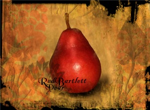 Botanical Red Pear