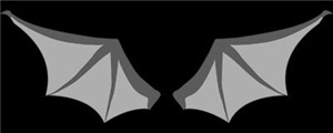 Bat Wings On Back