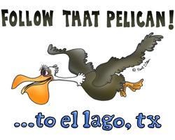 Follow That Pelican!