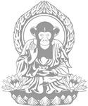 Zen Sapience Halftone