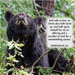 Sweetsmelling Bear - Ephesians 5:2
