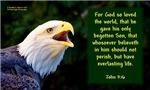 Talking Eagle - John 3:16 (eagle faces right)