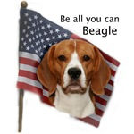 Be All you can Beagle 2