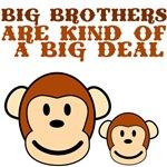 BIG BROTHER monkey
