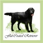 Flat-Coated Retriever Art gifts / merchandise