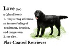 Flat-Coated Retriever Gifts of Love
