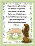 Irish Blessing Of the Dogs