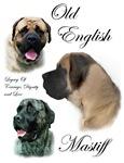Old English Mastiff Gifts