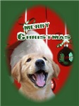 Christmas Holiday for Dog Lovers