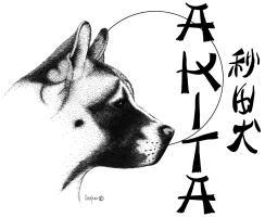 Akita Head white