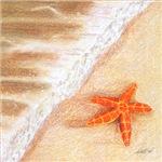 Starfish Vacation