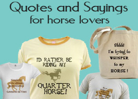 quotes and sayings for horse lovers (& others!)