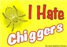 I Hate Chiggers