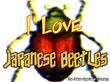 I love Japanese Beetles