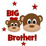 BIG Brother! Monkey