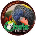 Birds of The Oasis Lorikeet Rainbow Collection