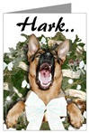 Hark..The Hairy Angel Sings!