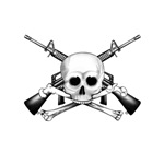 Skull and crossbones with two m-16s