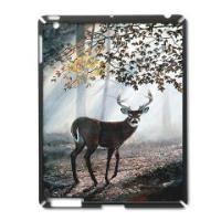 iPad Cases, Covers and Sleeves