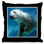 Swim With The Polar Bear