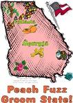 GA - Peach Fuzz Groom State! (2003 flag)