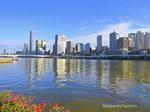 Brisbane Water View