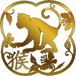Year of The Monkey T-Shirts & Gifts