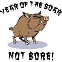 Year of The Boar T-Shirt and Gifts