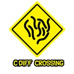 C. Diff Crossing Sign 03