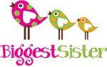 Tweet Birds Biggest Sister