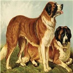 St. Bernard 1880 Digitally Remastered