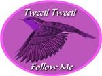 Tweet Tweet Follow Me Flying Bird
