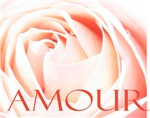 French Love Rose Amour